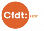 logo cfdtceidf